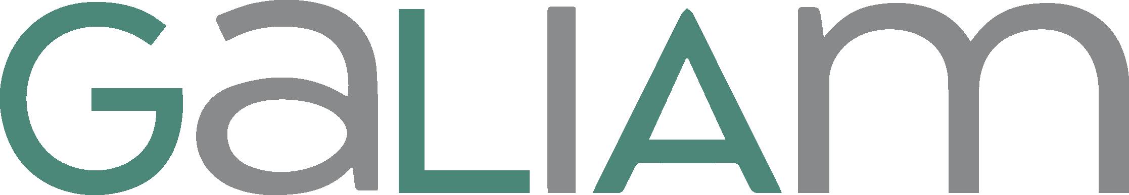 GALIAM Natursteine und Mietservice Logo
